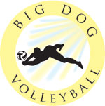 Big Dog Volleyball
